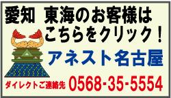 愛知県・東海地方にお住いの方はアネスト名古屋へ
